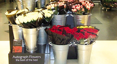 Autograph_Flowers_Display